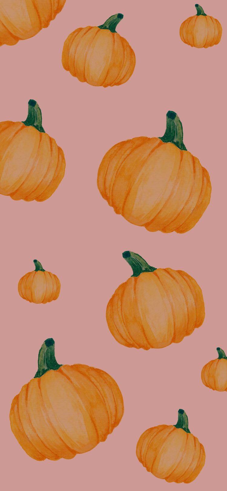 Cute Fall Aesthetic Wallpapers Pumpkins Pin On Pumpkin Perfected